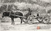 Фотография. Конец XIX века
