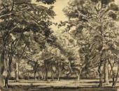 К.Ф. БОГАЕВСКИЙ. Лес. 1912