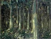 Лес ночью. 1910-е
