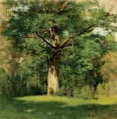 И.И.ЛЕВИТАН. Дуб. 1880